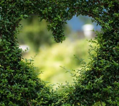 Ecologisch engagement